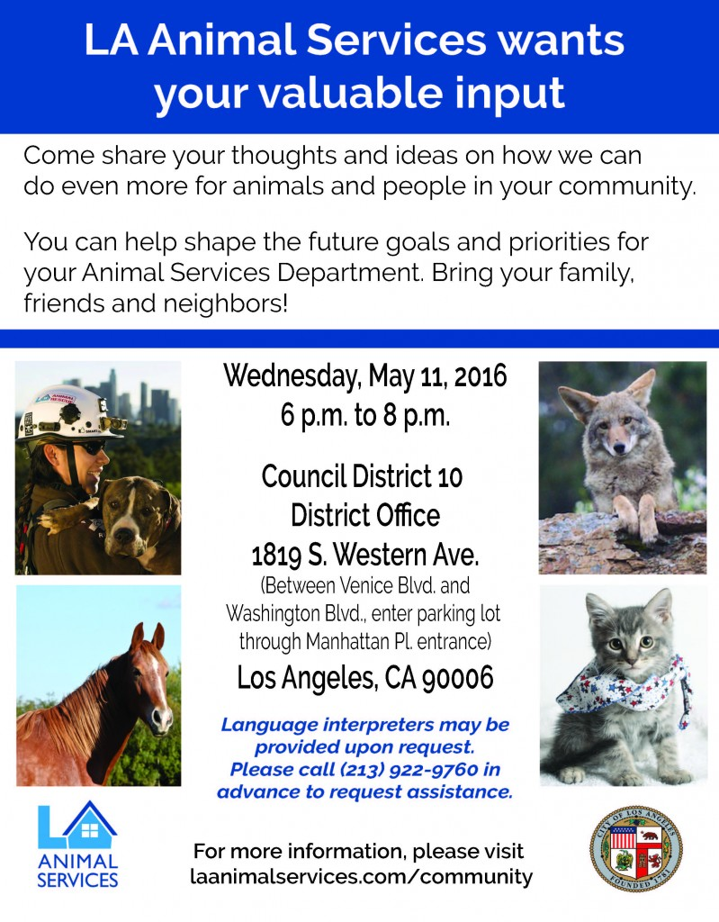 Strategic Plan Council Mtg Flyer_CD10