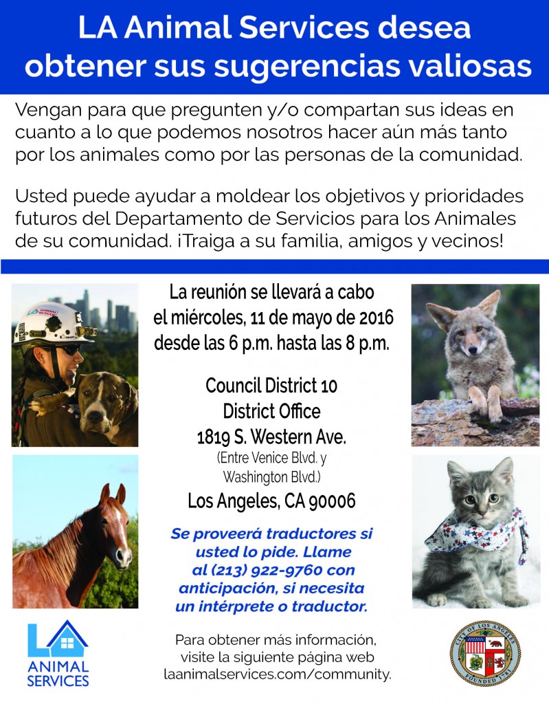 Strategic Plan Council Mtg Flyer_CD10_Spanish